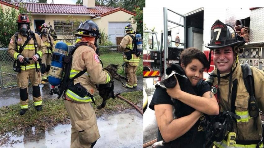 010218 Cat Rescue Fire
