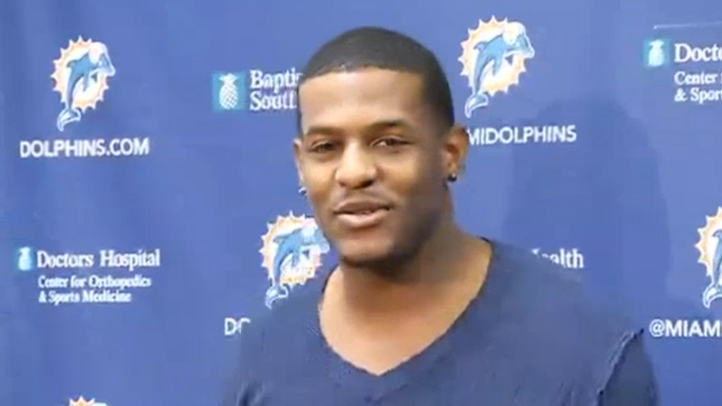 031313 mike wallace dolphins
