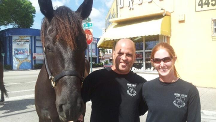 051513 miami police horse felipon