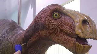 091716 Heard dinosaurs