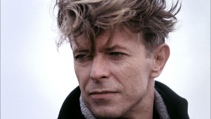 Bowie by Zuckerman