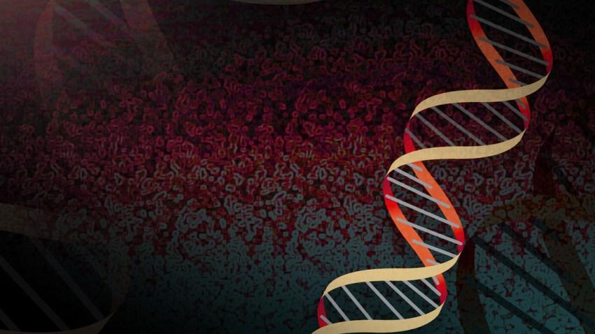 DNA Generic Double Helix