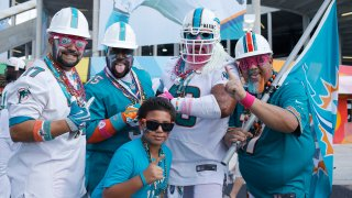 Miami Dolphins Football 8612