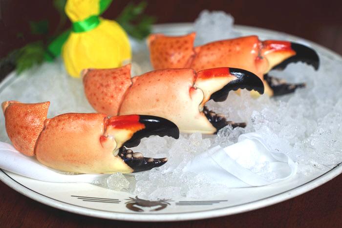 Florida stone crabs visitfloridakeys