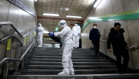 Infections Climb in South Korea as World Fights Virus