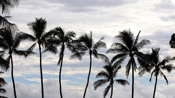 Hawaii-Kauai-137557017