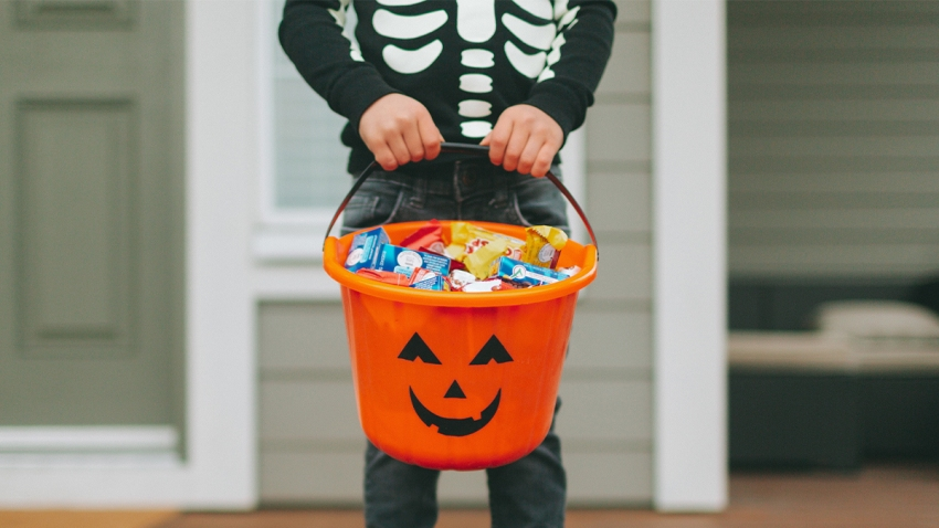 Halloween 2020 School Holidays Florida Senator Proposes Making Day After Halloween a School