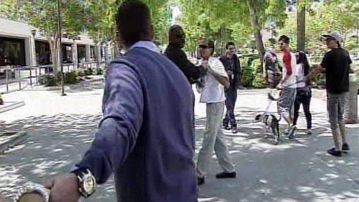 Paris Hilton Boyfriend Attacked Near Courthouse