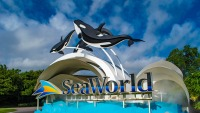 SeaWorld Parks Reopen in Florida With Masks, Temperature Checks