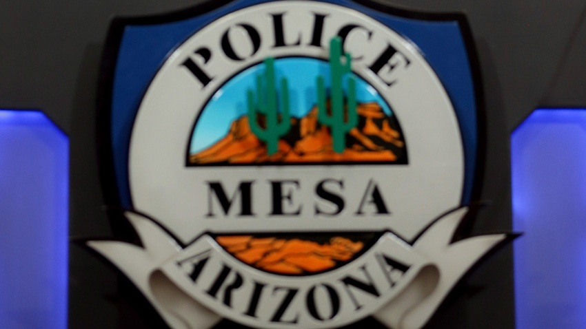 Arizona Police Use of Force