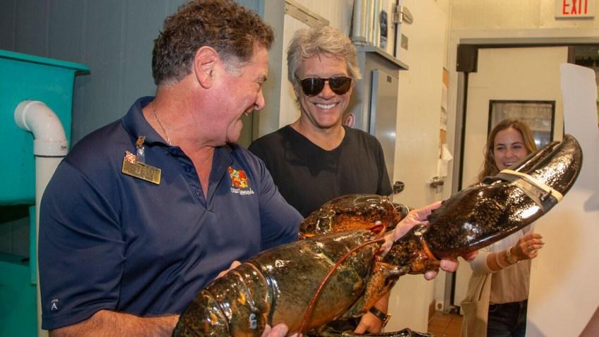 bon-jovi-lobster