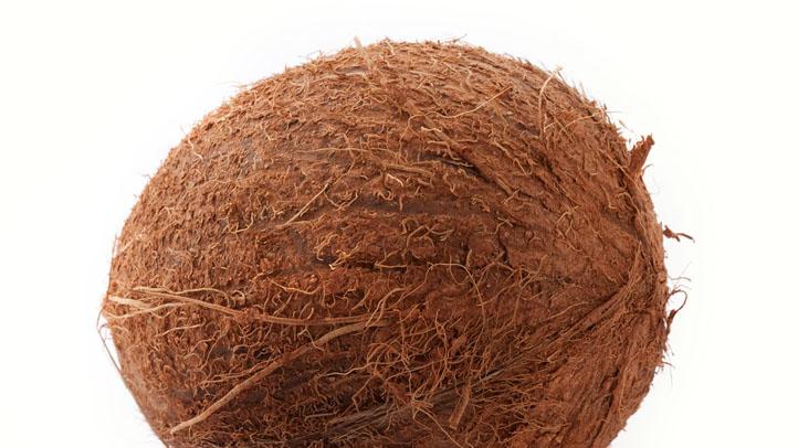 coconut generic
