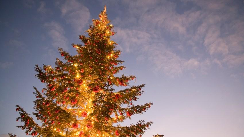 generic christmas tree lighting