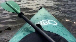 generic kayak