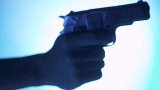 gun generic 722 x 406