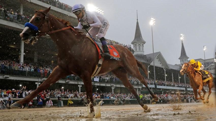 Horse Racing Medication