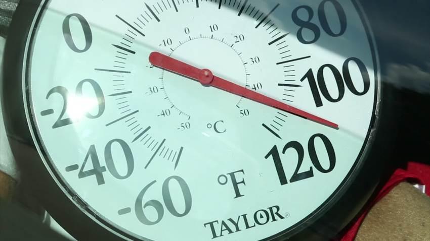 Consumer Reports: Hot Car Danger