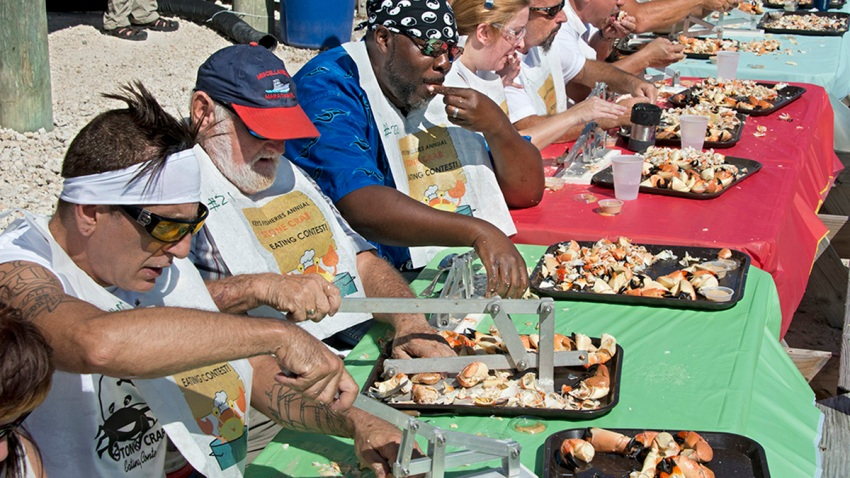 keys stone crab eating contest
