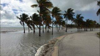 Miami Beach King Tides