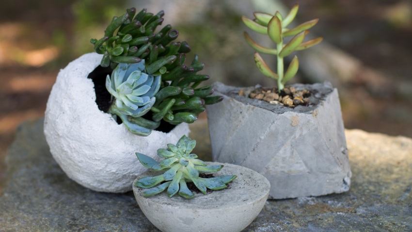 Concrete Planters Are Easy, Cheap to Make – NBC 6 South Florida on boca burger, mr. peanut, stove top stuffing, a1 steak sauce, kraft singles, oscar mayer, country time, miracle whip,