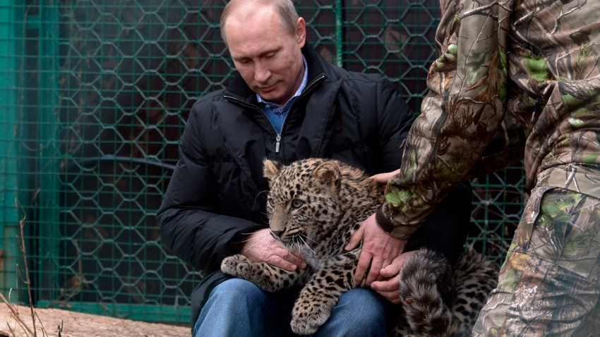 Russia Sochi Putin