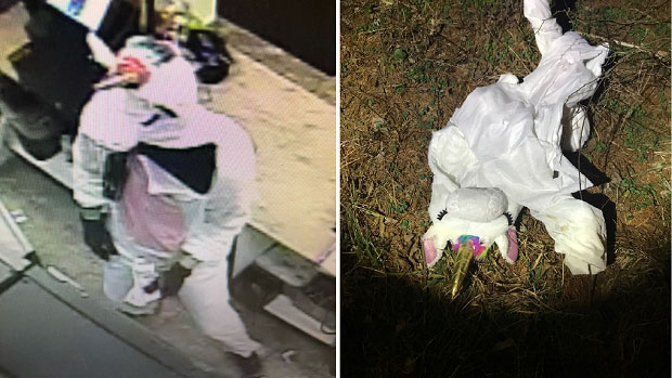 unicorn robbery suspect costume
