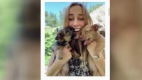 Helping Hands: Teen Helps Families Feed Their Pets During Pandemic