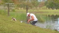 Man Caught on Camera Rescuing Puppy From Alligator's Grip in Lee County