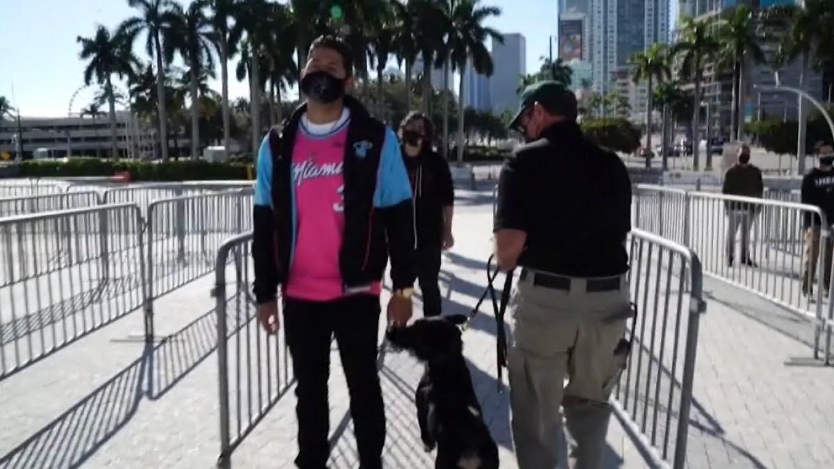 miami heat dogs covid detection arena fans 2021 nbc florida