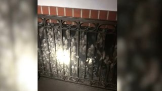 Birds were trapped in a fireplace Sunday April 25, 2021 at a Montecito home.
