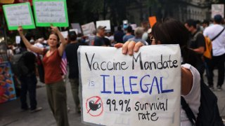 Vaccine Mandates for Travel Are Legal in the U.S. — and More Are Probably Coming