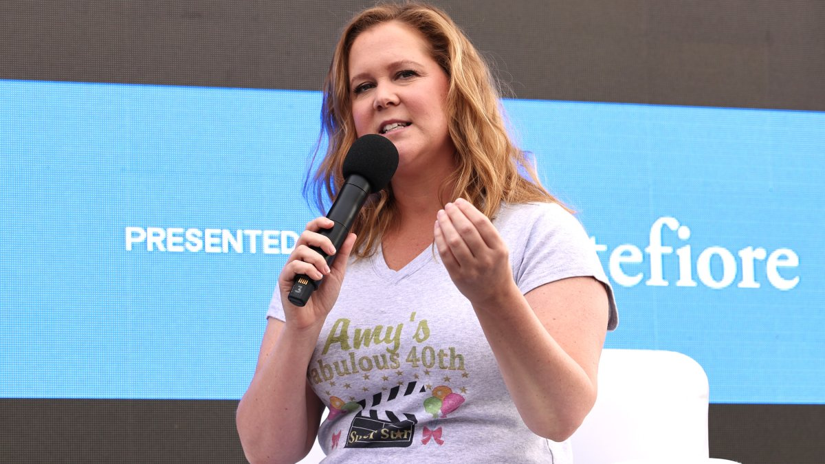 Amy Schumer Gets her Uterus and Appendix Removed After Endometriosis Diagnosis