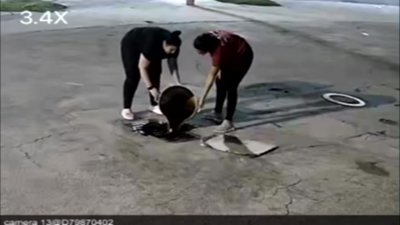 Caught on Camera: Women Dump Cooking Oil Into Storm Drain