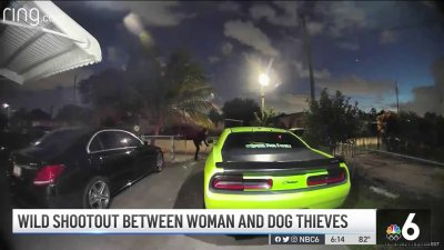 Wild Shootout Between Woman and Dog Thieves in West Park