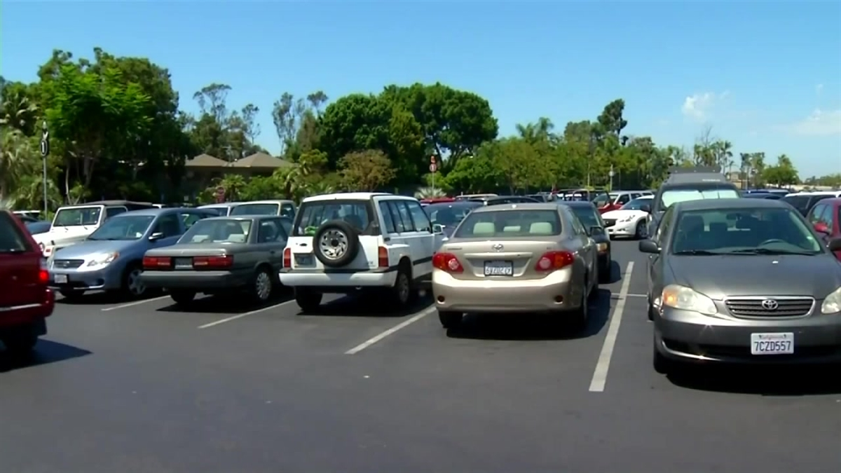 San Diego Zoo Parking Lot Theft
