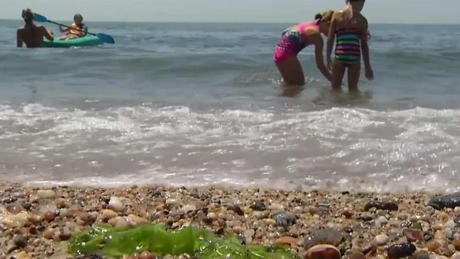 CT Man Contracts Flesh-Eating Bacteria After Swimming at Hammonasset