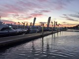 Miami Int'l Boat Show Celebrates 75 Years With New Location