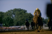 GettyImages-244385 Who Are the Fastest Preakness Stakes Winners?