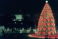 1995 National Christmas Tree