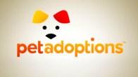 "Pet Adoptions: ""Tony"""