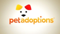 "Pet Adoptions: ""Ash"""