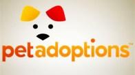 "Pet Adoptions: ""Brillo Bear"""