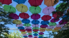 Umbrella Art Adds Colorful Explosion to Coral Gables