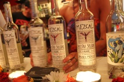 The One Night Only Mezcaleria Bar