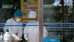 "New Bird Flu Strain ""One of Most Lethal"" Flu Viruses"