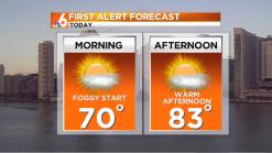 Forecast: Warm, Sunny Sunday