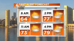 Forecast: Mild, Warmer Sunday