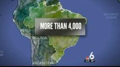 Florida Governor Declares Zika Emergency in 4 Counties