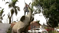 Man Puts Giant Elephant Structure Outside Home in Southwest Miami-Dade