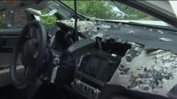 Bear Gets Stuck In Car and Destroys It